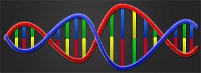 DNA_IO8