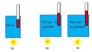 FizikDogasi_T2S1