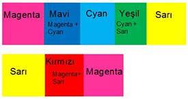 RenkbilgisiS10I5
