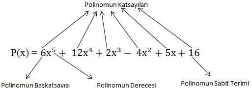 polinom tanim