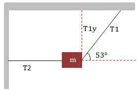vektor_test_cevaplar4